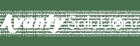 Logo Blanco Avanty Solutions